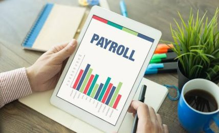 Advanced Payroll Solutions For Small Business