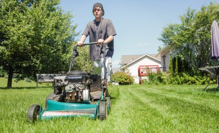 Mowing Business as a Teenager